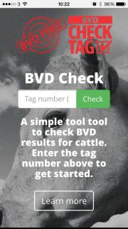 BVD Check home page on a mobile phone