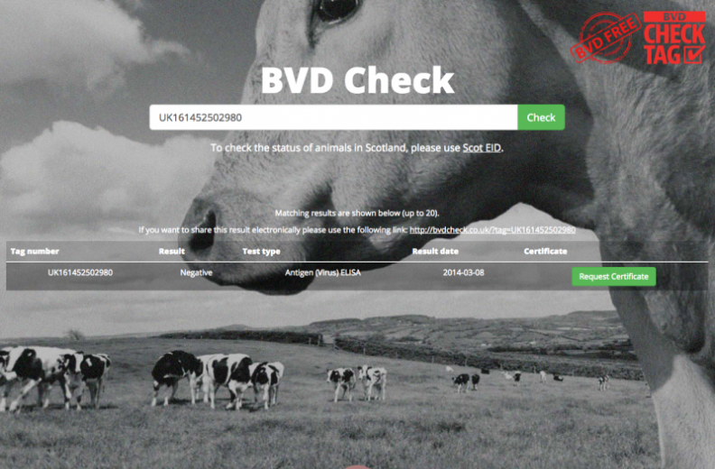 BVD Check results