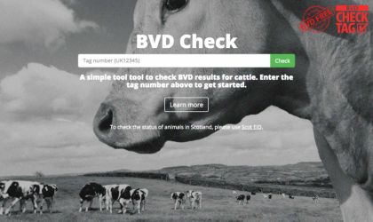 BVD Check home page